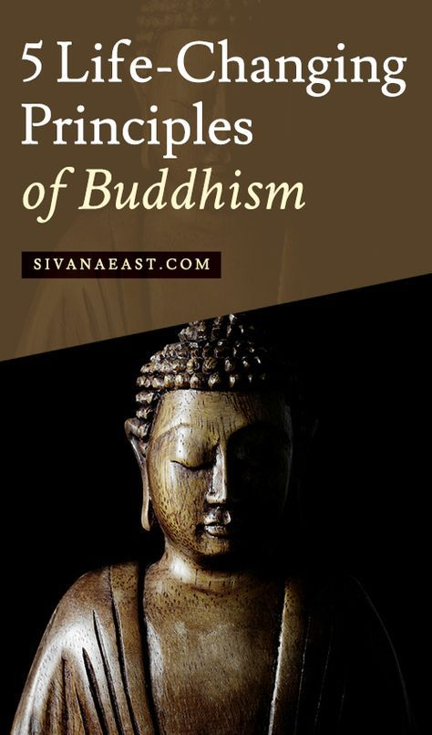 5 Life-Changing Principles Of Buddhism