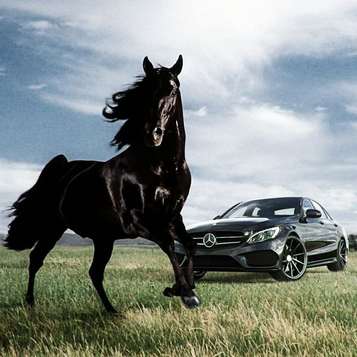 Beauty, elegance and strength of a wild horse - attributes to describe the new C-Class! Artwork created by 3D automotive Designer Millergo (@millergo_cg) from Spain. Please follow his amazing work on Instagram and check his website 'millergocg.com' where you can also find many 3D-Design Tutorials and Timelapses! #mbcollab #3DDesign #Cardesign #automotivedesign #millergo #cclass #autoart #amazingcars247 #carsovereverything #wildhorses #mbcar #mercedesbenz #cgimage