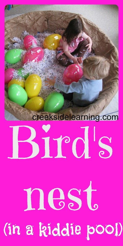 Make a bird's nest out of a kiddie pool, brown paper packaging, and paper from the paper shredder. | Creekside Learning