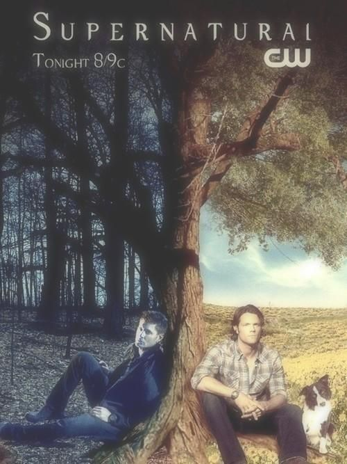 I don't think Dean had that much time for resting in Purgatory. Sam on the other hand...that looks about right, dog and all.