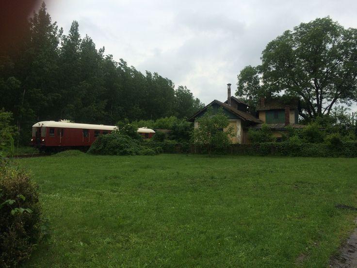 Mezőföld fotósvonat Ópaks állomáson.