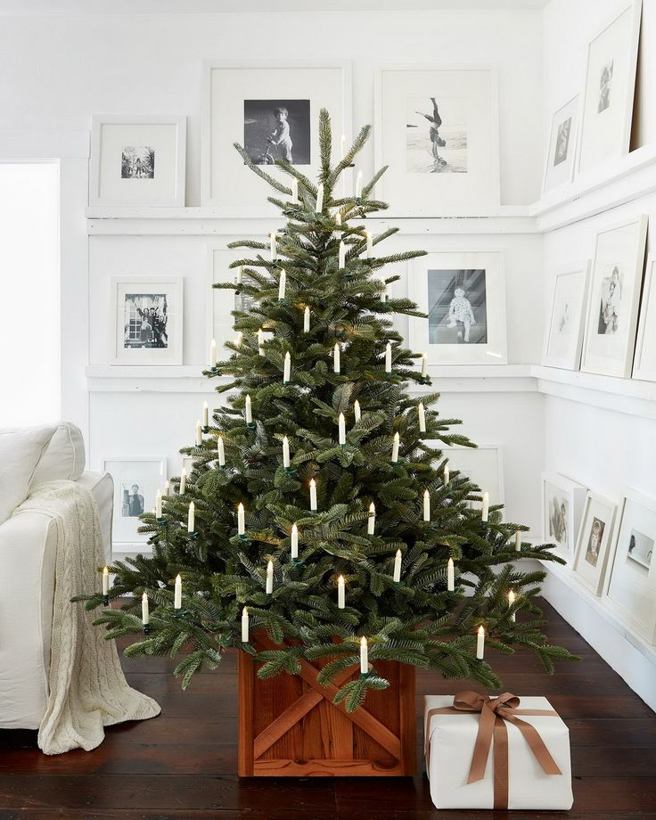 Nature's raw beauty takes center stage in one of our most unique artificial Christmas trees. Inspired by mountain woodlands, this tree is sparse by design and features spacious gaps between branches. Its foliage is crafted with our True Needle™️ technology to capture the look and texture of a real fir.