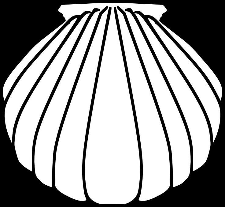 baptism shell coloring pages - photo#17