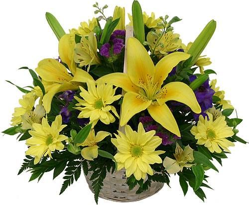 Send this yellow flowers basket to dear ones in India. View all flowers Click: http://www.indiangiftscenter.com/flower.html