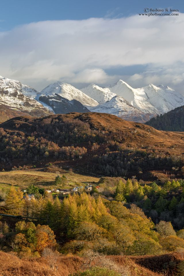 Five Sisters In Autumn. Auchtertyre Hill. Lochalsh…