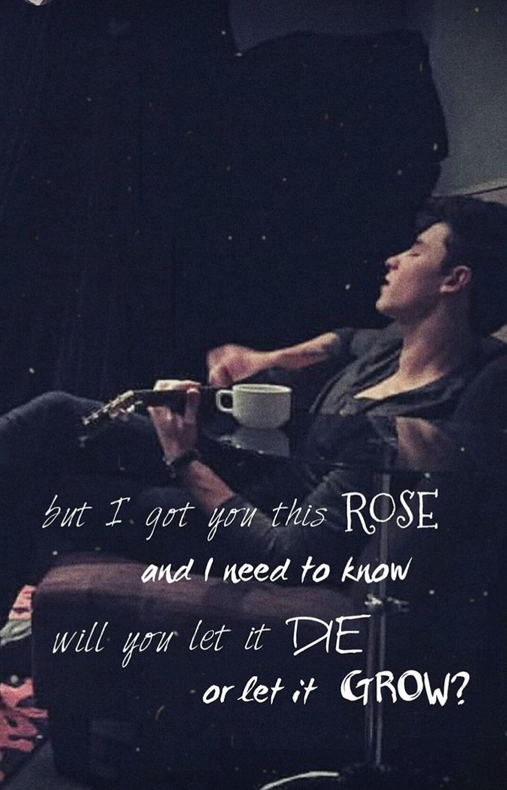 """will you let it die or let it grow"" -Shawn Mendes ( Roses)"
