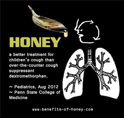 Honey & Coffee as good as Prednisone to calm cough Tastiest Home Remedy For Cough: Honey