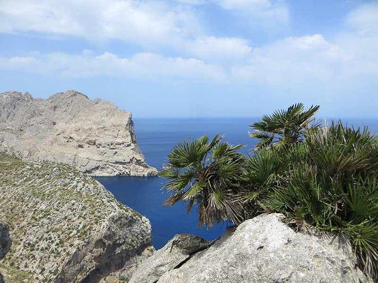 Mit dem Auto entlang der Westküste Mallorcas von Soller zum Cap Formentor