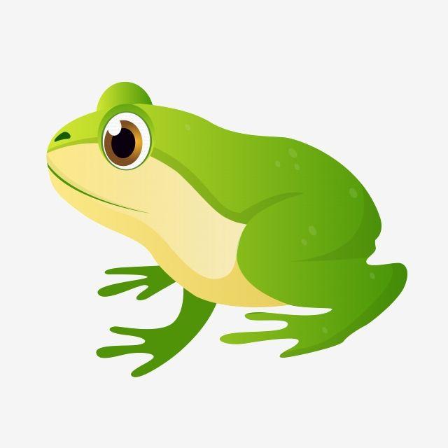 الأخضر الضفدع الكرتون عيون كبيرة الضفدع Png و Psd Frog Green White Animals