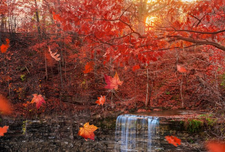 Tews Falls - An Autumn Sunset at Tews Falls in the Spencer Gorge Conservation Area, Hamilton, ON.
