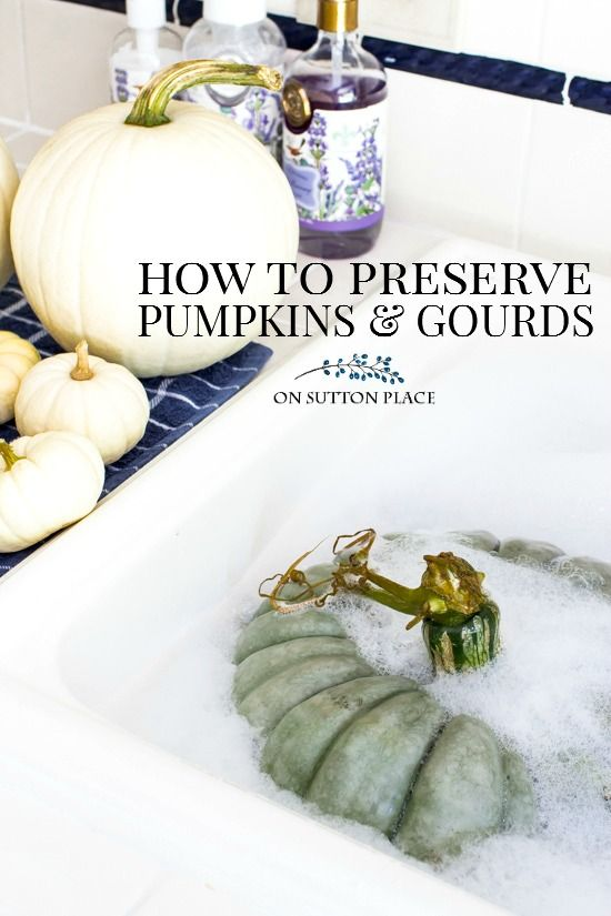 An easy and quick method, using just three ingredients, to preserve pumpkins & gourds for your fall decor. This takes just a few minutes! How to make pumpkins last longer. via @adrake606