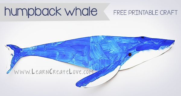 Printable Humpback Whale Craft from LearnCreateLove.com