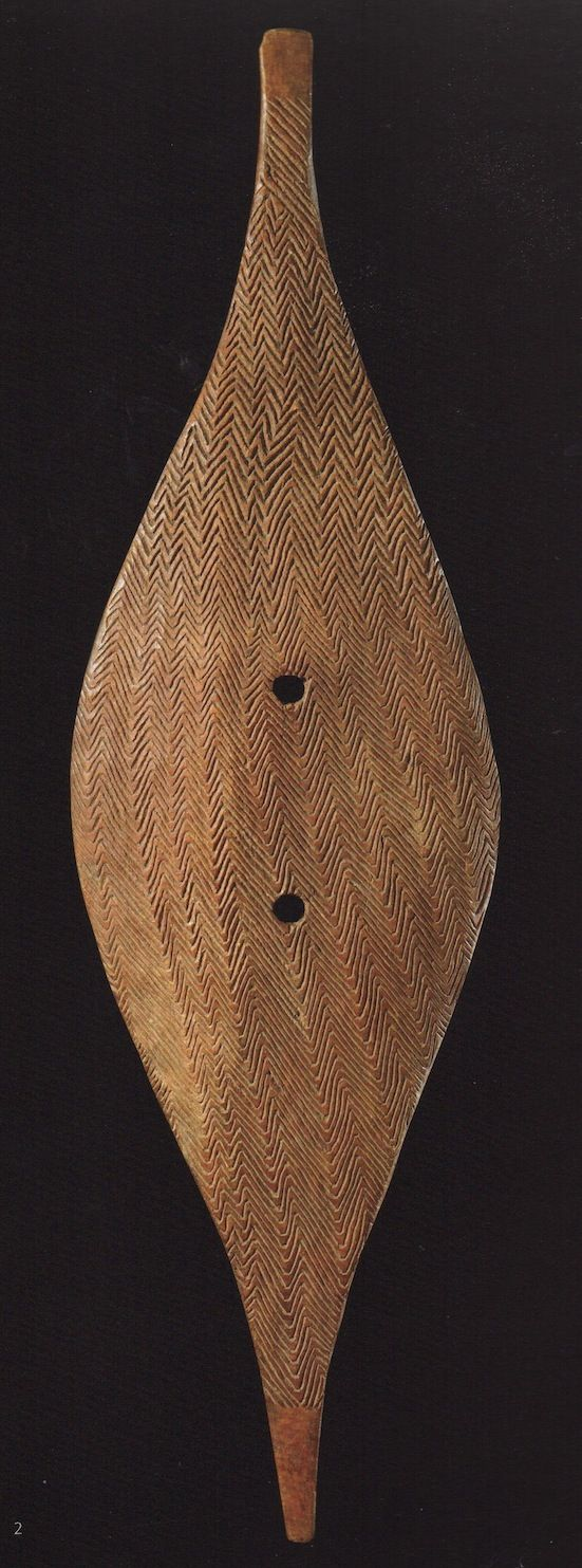 broad shield from south eastern Australia