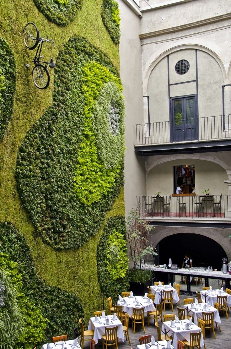 Green Wall- Mexico City - Favorite Photoz
