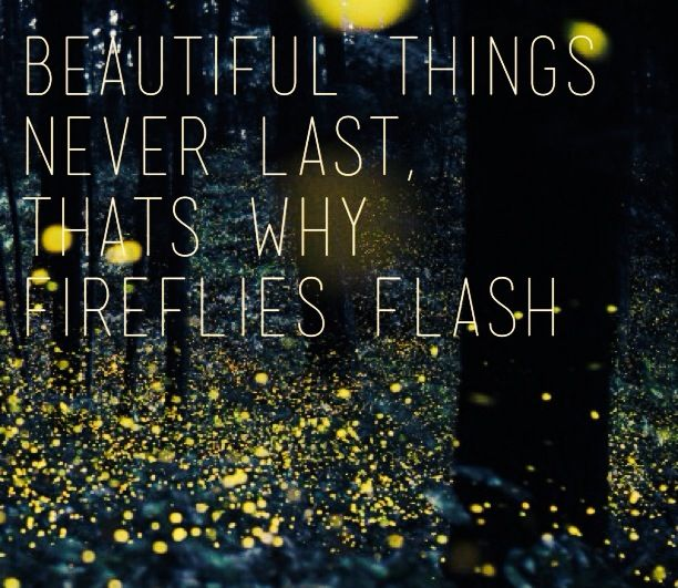 Fireflies ~ Ron Pope