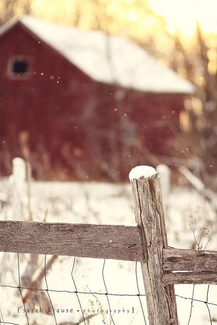 Barn and fence in winter