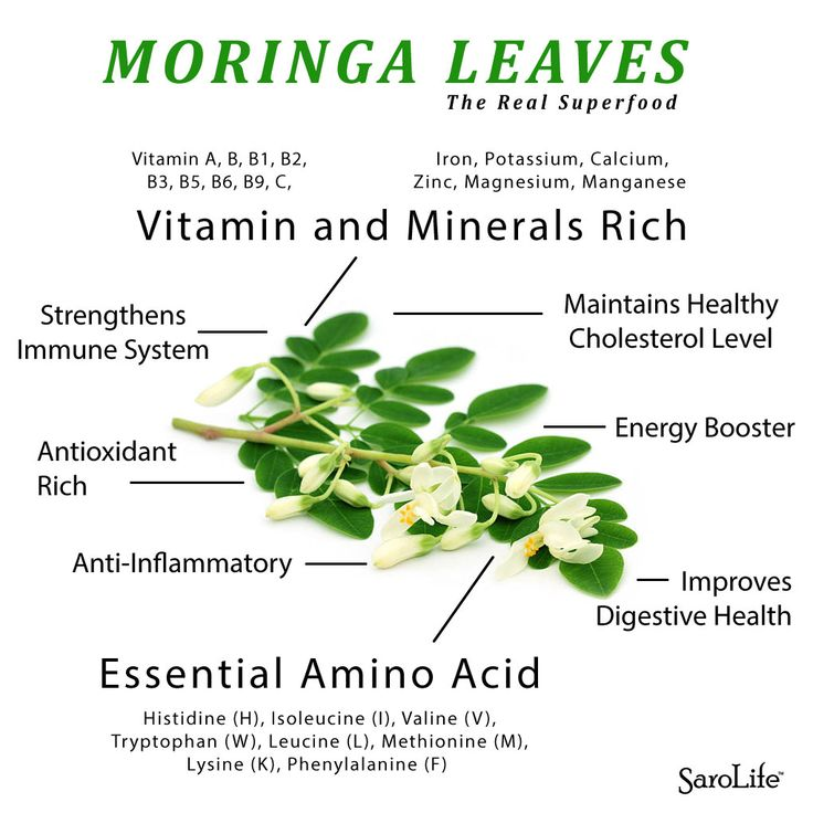 Moringa oleifera, also commonly known as ben oil tree, horseradish tree and drumstick tree, is a fairly large tree that is native to northwestern India.  Moringa leaves are with a significant source of amino acids, vitamins such as; B vitamins, vitamin C, provitamin A as beta-carotene, vitamin K, minerals including; calcium, magnesium, iron, potassium, and among many other essential antioxidants.  Although most plant based protein are considered inferior to animal sources, Moringa has the…