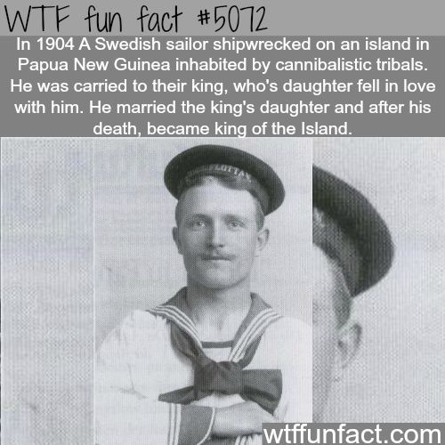 Wtf facts funny interesting weird facts awesome for Good facts about america