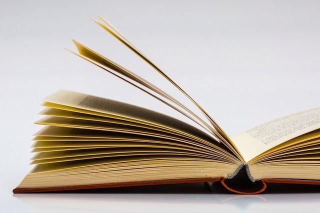 Comment mettre en place une bibliothèque numérique libre et gratuite ?