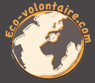 Equateur : volontaire au refuge Merazonia dans la forêt amazonienne | Ecovolontariat, le site du voyage utile