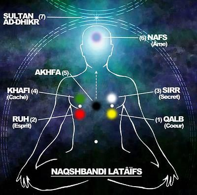 Drawing from Qur'anic verses, virtually all Sufis distinguish Lataif-as-Sitta (&qout;the six subtleties&qout;): Nafs, Qalb, Sirr, Ruh, Khafi, and Akhfa. These lataif (singular: latifa) designate various psychospiritual &qout;organs&qout; or, sometimes, faculties of sensory and suprasensory perception. They are thought …