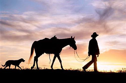 Cowboy On Horseback at Sunset | Silhouette of Cowboy, Horse and Dog at Sunset