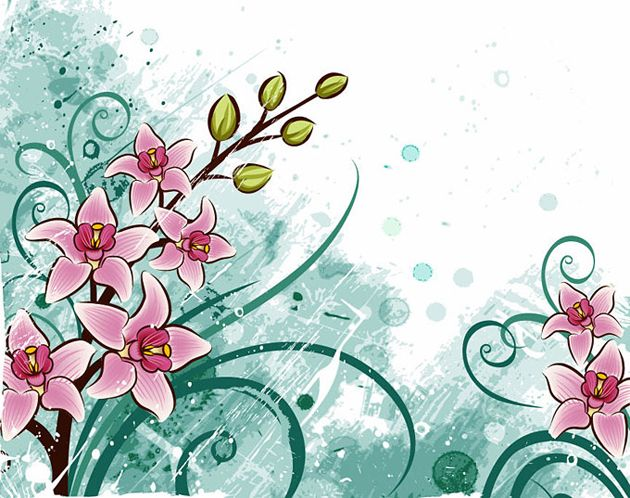 Floral Background With Lily Flower Vector