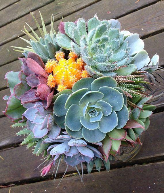 Best 25+ Succulent Bouquet Ideas On Pinterest