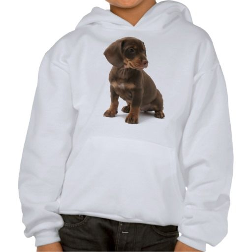 Dachshund Puppy Hooded Sweatshirt