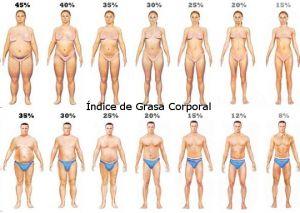 Indice de masa muscular y grasa corporal