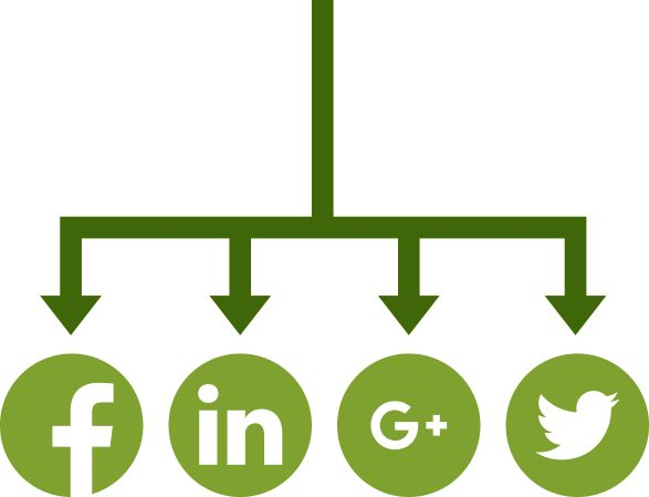 Social Media -  Earn an audience for your brand with social content distribution. Engage a targeted audience using paid and organic social media content placements. Maximise engagement using our data led approach to profiling your audience.