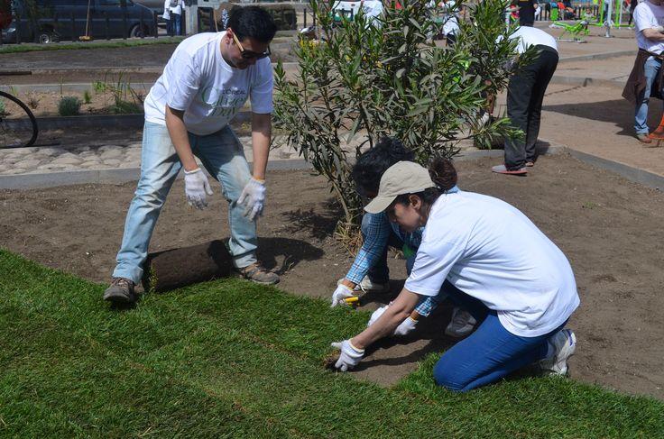 Galería - Fundación Mi Parque: avanzando hacia un diseño participativo de áreas verdes - 2