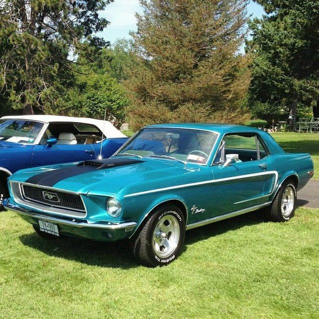 Pin By Kay Mclurg On Mustangs Classic Cars Vintage Muscle Cars 1968 Mustang Coupe