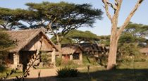 6 Day Tanzania Northern Circuit Safari. This 6 day Northern Circuit Safari, is a classic Tanzania trip. It takes in Ngorongoro, Serengeti and Lake Manyara. The start and end is at Arusha - not farfrom Kilimanjaro International Airport. A nice add on for this safari is some beach & relaxation time either on Tanzania's coast or in Zanzibar.