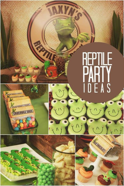 What's there to love about a boy's reptile themed birthday party? This one will leave you hopping with ideas! Don't miss the reptile cupcakes and amazing printable decorations!
