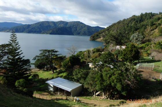 Pelorus Sound farmhouse-Pelorus Sound-Bach or holiday home