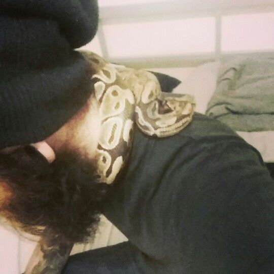 My new baby. Boba the ball python