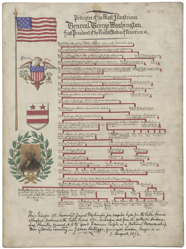 Pedigree of the Most Illustrious General George Washington, first President of the United States of America.  Presented to President Ulysses S. Grant, 08/01/1873. Located at the National Archives.   This illustrated lineage chart was presented by genealogist James Phillippe of London, England to President Ulysses S. Grant in 1873. Want to research your own ancestry?  Check out the National Archives Genealogy resources → What illustrious personalities are hiding in your family tree?