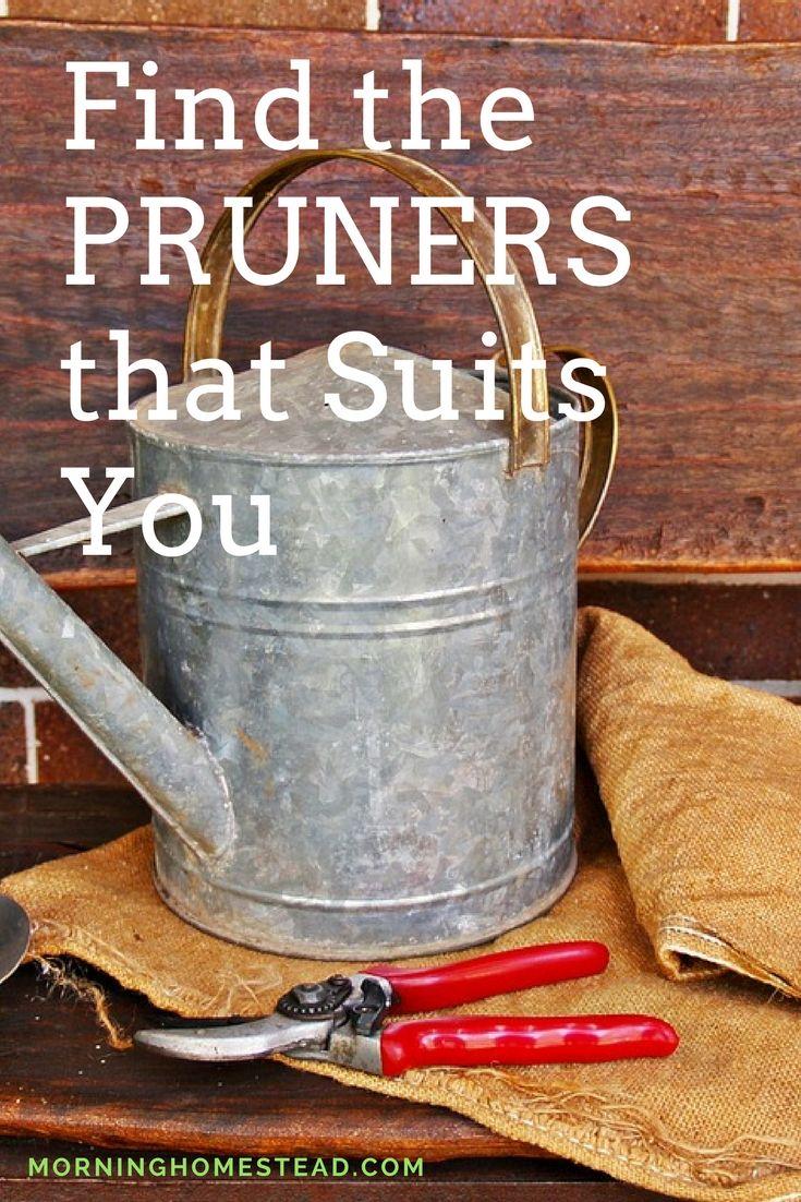 best hand pruners 2018 ==== best pruning shears 2018  hand pruners comparisons  bahco pruners  best pruning loppers  felco hand pruners  best pruners 2018  ars hp-vs8z