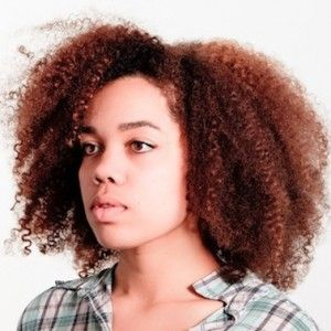 hair styles for blacks 658 best black gingers images on hair 4098 | ad9ac8ce1ff663b6ac0a1e57050a4098 dope hairstyles natural hairstyles