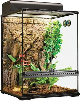 Reptile Supplies 1285: Exo Terra Glass Terrarium Mayan, Small/Tall -> BUY IT NOW ONLY: $159.95 on eBay!