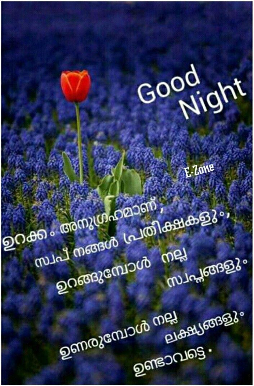 Pin By Eron On Good Night Malayalam Night Wishes Good Night Image Night Quotes