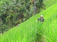 Hiken bij Loksado #Kalimantan #Borneo #Indonesie