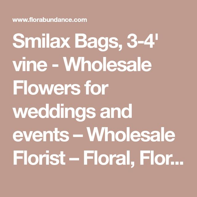 Smilax Bags, 3-4' vine - Wholesale Flowers for weddings and events – Wholesale Florist – Floral, Floral Supply, Flower Distributor