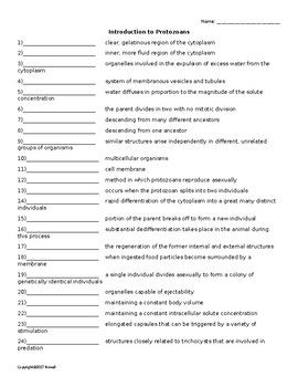 Quiz or Worksheet covering the terminology that will be introduced when discussing Protozoans with students studying Invertebrate Biology. There are 24 words total. This may be used in conjunction with the Protozoans Word Search, Cross Word, and Flash Cards.