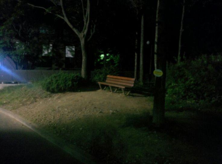 기숙사 구관 근처