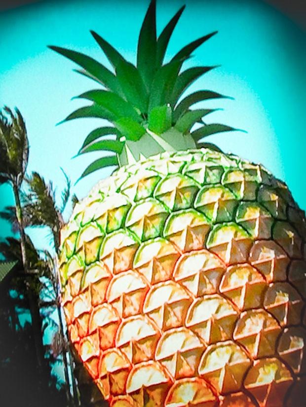 Big things | The Big Pineapple #sunshinecoast #triplejroadtrip