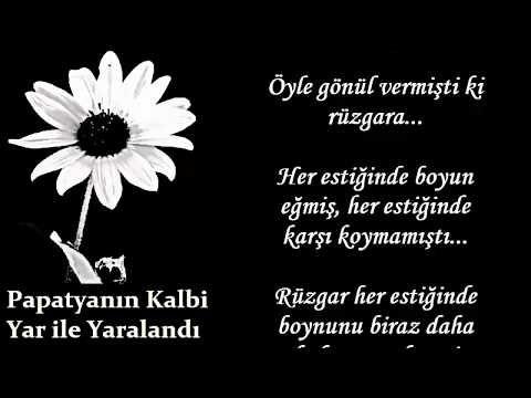 Halil Sezai - Ahmet Selçuk İlkan - Unutmak İstiyorum (Şiirsel Cafe) - YouTube