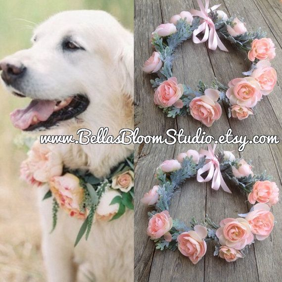 Pink dog collar wedding dog collar Girl dog by BellasBloomStudio OMG MARGOT SO CUTE!