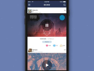 GIF for the ECHO App v2.1